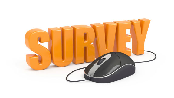 web-survey